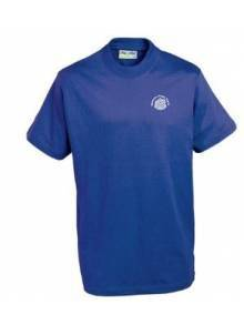 AJ007 - Royal Blue T Shirt - 3TC