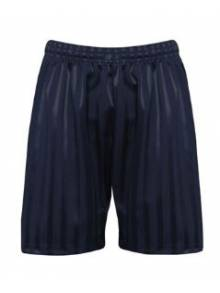 Navy Shadow Stripe Shorts - 3BS