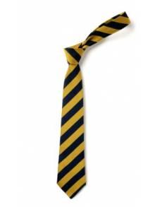 "AJ019 - Clip on 14"" Tie Navy & Gold - BS59"