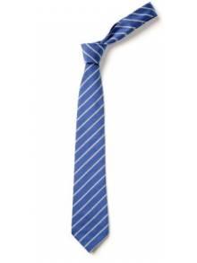 """AJ015 - 14"""" Clip on Tie"""