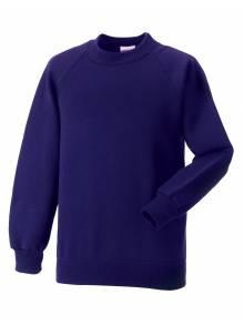 AJ864 - Purple Sweatshirt