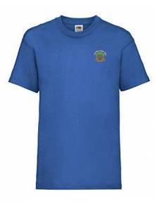 AJ020 Royal Blue Tee Shirt - SS031