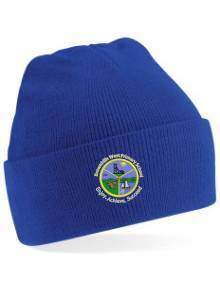 AJ276 - Royal Blue Woolly Ski Hat